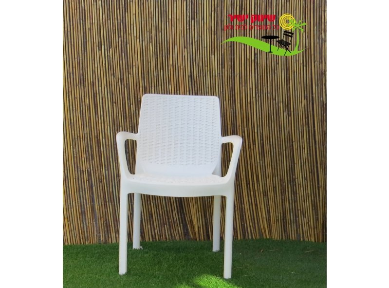 6 כסא באלי כתר פלסטיק
