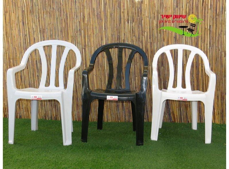 6 כסא דליה כתר פלסטיק