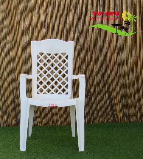 צעיר 6 כסא לירון כתר פלסטיק - שיווק ישיר RT-27